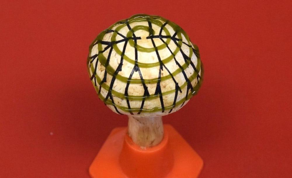 Bionická houba využívá bakterie a grafen k výrobě elektřiny