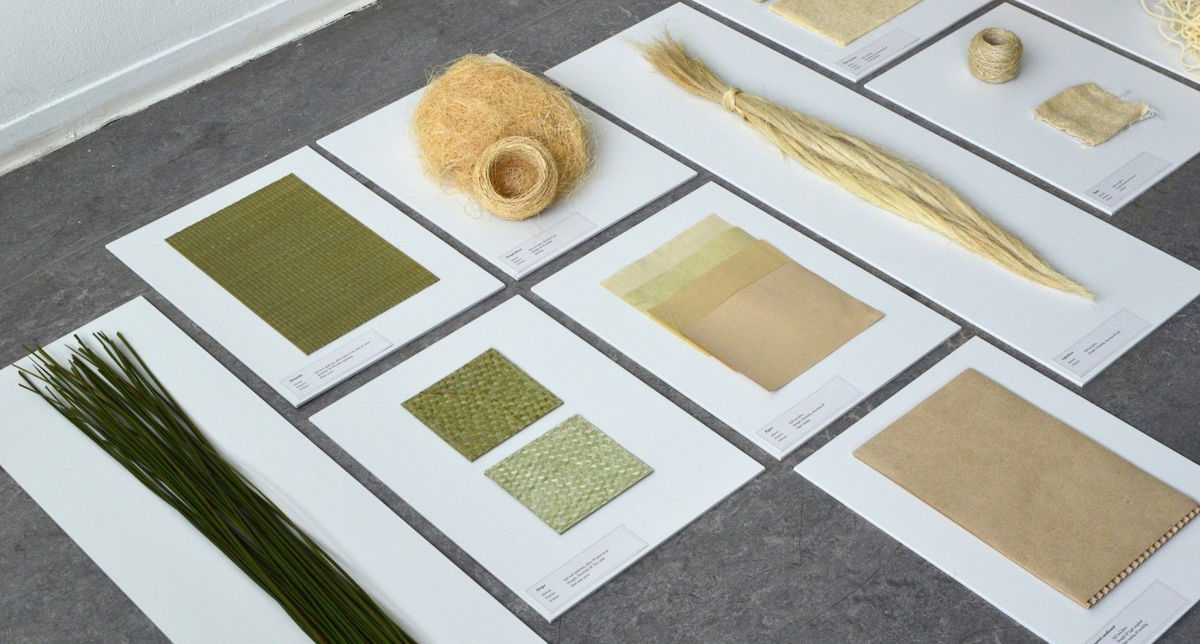 Don Kwaning vyrobil z rostliny ekologický obalový materiál