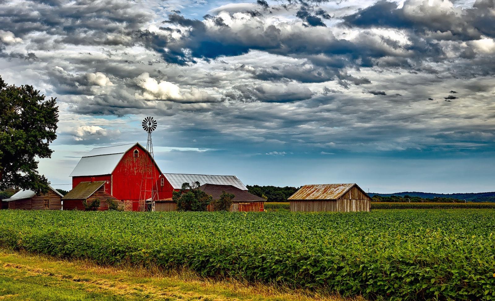 Australský startup nabízí vzdáleným farmářům připojení na Wi-Fi