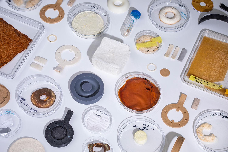Finské studio Aivan vypěstovalo sluchátka z hub a kvasinek