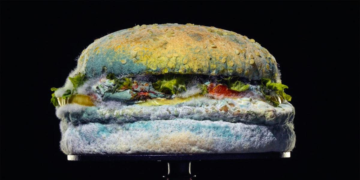 Burger King se chlubí plesnivějícím Whopperem